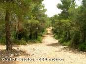 Coll d'Estelles - ES-b-0490b