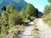 Coll de Bura - ES-L-0610
