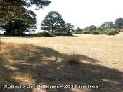 Collado del Sabinar - ES-AL- 2011 mètres