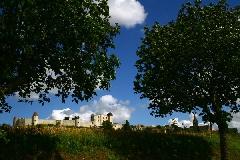 viree10 CEperigu - 16 Villebois L 7108 chateau