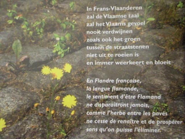 De relatie tussen het Frans-Vlaams en het Nederlands - Pagina 2 101007092539970736885333
