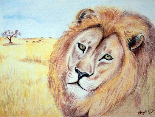 Le roi lion 101010085429981806901186