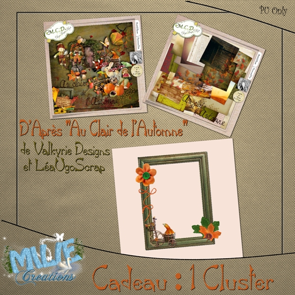 Kit Collab Au Clair de l'Automne_Val&LUS Pv Cluster.600