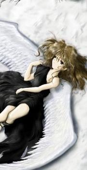 Avatar d'anges blancs/noirs 1010241025041072226986027