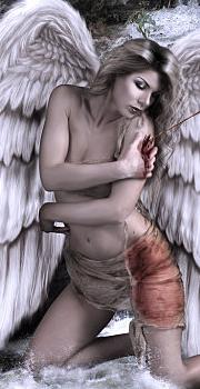 Avatar d'anges blancs/noirs 1010241025351072226986042