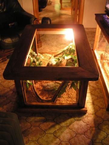 "[Article] Terrarium ""table de salon"" 1010260953191198286998698"
