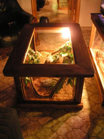 terrarium table de salon b b ne. Black Bedroom Furniture Sets. Home Design Ideas